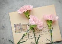 Cartas de amor para mi novio que está lejos