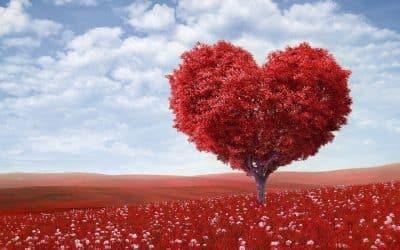 Versos de amor cortos: ¡La mejor selección para enamorar!