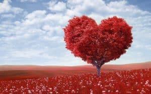 Citas bíblicas sobre el amor puro y el amor a Dios
