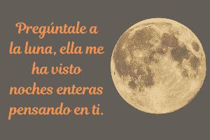 Frases De Buenas Noches Muy Bonitas Para Dedicar En 2019