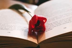 Qué mejor forma de enamorarlo que con estas lindas frases de amor